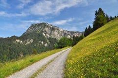 Paisaje del paisaje en las montañas Fotografía de archivo