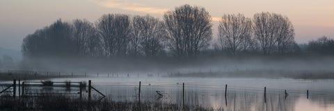 Paisaje del panorama del lago en niebla con resplandor del sol en la salida del sol imagenes de archivo