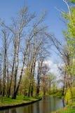 Paisaje del parque Foto de archivo