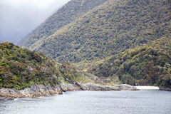Paisaje del parque de Fiordland Fotos de archivo