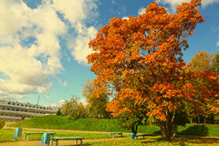 Paisaje del parque de la ciudad del otoño con la nave Foto de archivo