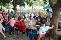 Paisaje del parque de Shenzhen Xixiang Fotos de archivo libres de regalías