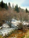 Paisaje del parque de Utah en invierno foto de archivo libre de regalías