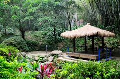 Paisaje del parque de Yuexiu Foto de archivo libre de regalías