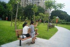 Paisaje del parque del lichí de Shenzhen, en China Imagen de archivo