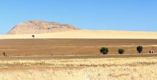 Paisaje del parque nacional de Namib-Naukluft de la visión en Namibia Foto de archivo libre de regalías