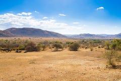 Paisaje del parque nacional de Pilanesberg, Suráfrica Foto de archivo