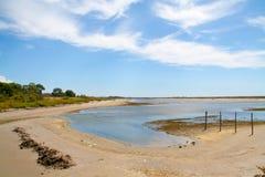 Paisaje del parque regional de Camargue Imagenes de archivo