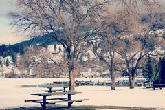 Paisaje del parque y de los árboles del invierno Imagen de archivo libre de regalías