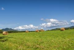 Paisaje del país en los Midi-Pirineos (Francia) Fotografía de archivo libre de regalías