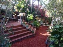 Paisaje del patio trasero Imagen de archivo libre de regalías