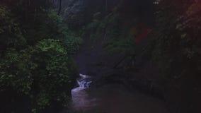 Paisaje del pequeño río corriente de la colina rodeada por los árboles y los arbustos de la sombra metrajes
