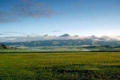 Paisaje del prado de Bayanbulak Imagen de archivo