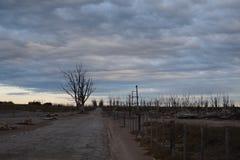 Paisaje del pueblo fantasma de Epecuen Fotografía de archivo