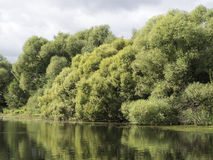 Paisaje del río de agosto Imagen de archivo libre de regalías