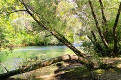 Paisaje del río de Cetina en Croacia del barco Imagen de archivo libre de regalías