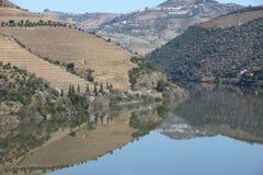 Paisaje del río de Douro Imagen de archivo libre de regalías