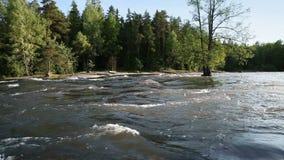 Paisaje del río de Kymi en Finlandia almacen de metraje de vídeo