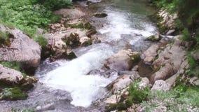 Paisaje del río de la montaña almacen de metraje de vídeo