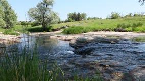 Paisaje del río de la montaña, desbordamientos ruidosos del agua almacen de video