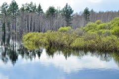 Paisaje del río de la primavera. Imagenes de archivo