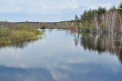 Paisaje del río de la primavera. Imagen de archivo libre de regalías