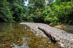 Paisaje del río de Landak en Bukit Lawang Fotografía de archivo