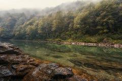 Paisaje del río de Tara en Bosnia fotografía de archivo
