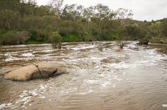 Paisaje del río del cisne Fotos de archivo