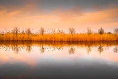 Paisaje del río del delta de Danubio imagenes de archivo