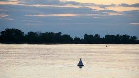 Paisaje del río en la puesta del sol El vídeo es de la nave Una multitud de los pájaros que vuelan sobre el agua El cielo y las n almacen de video