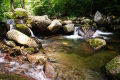 Paisaje del río en la región montañosa de taiga Fotografía de archivo libre de regalías