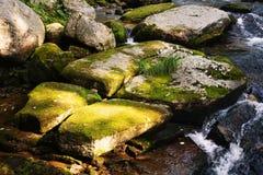 Paisaje del río en una región montañosa remota Imagen de archivo libre de regalías