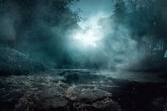 Paisaje del río espeluznante en la noche imagen de archivo libre de regalías