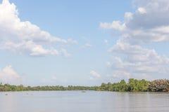 Paisaje del río y de árboles en campo natural Imagenes de archivo