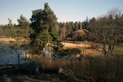 Paisaje del resorte Foto de archivo