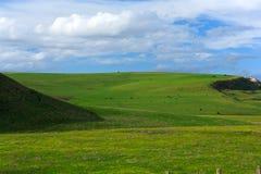 paisaje del resorte - campo verde   Fotografía de archivo