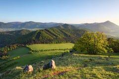 Paisaje del resorte de Eslovaquia Fotografía de archivo libre de regalías