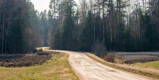 Paisaje del resorte El camino que lleva al bosque fotografía de archivo