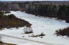 Paisaje del resorte El río todavía está debajo de hielo Dos perros funcionados con a lo largo del hielo Imagenes de archivo