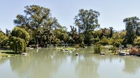 Paisaje del resorte en el jardín japonés fotos de archivo