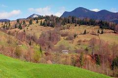 Paisaje del resorte en las montañas de Rumania Fotografía de archivo