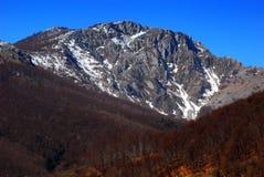 Paisaje del resorte en las montañas de Rumania Fotos de archivo