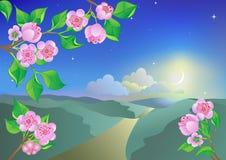 Paisaje del resorte en noche del claro de luna. stock de ilustración