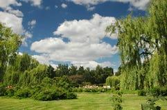 Paisaje del resorte en un jardín de la botánica con el cielo Imágenes de archivo libres de regalías