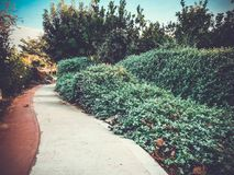 Paisaje del resorte Las ramas verdes de la primavera parquean árboles y cabinas en un día de primavera Un parque verde con los ár Fotos de archivo