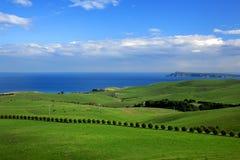 paisaje del resorte - opinión verde del campo y de océano Foto de archivo libre de regalías
