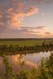Paisaje del retrato del río de los ciervos comunes Foto de archivo libre de regalías