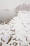 Paisaje del Riverbank Nevado Foto de archivo libre de regalías