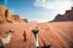 Paisaje del ron del lecho de un río seco, desierto y montañas, Jordania Camino en aventura Foto de archivo libre de regalías